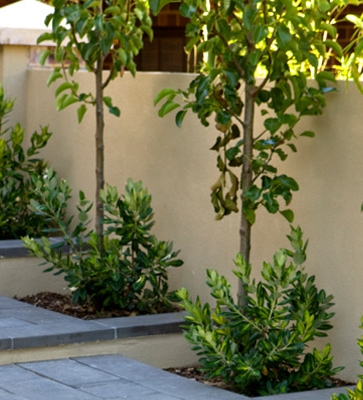Driveways and Paths15